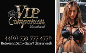 VIP Companion International